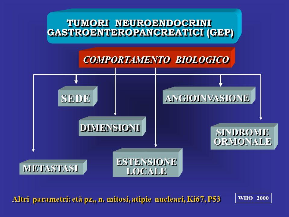 TUMORI NEUROENDOCRINI GASTROENTEROPANCREATICI (GEP) TUMORI NEUROENDOCRINI GASTROENTEROPANCREATICI (GEP) COMPORTAMENTO BIOLOGICO DIMENSIONIDIMENSIONI A