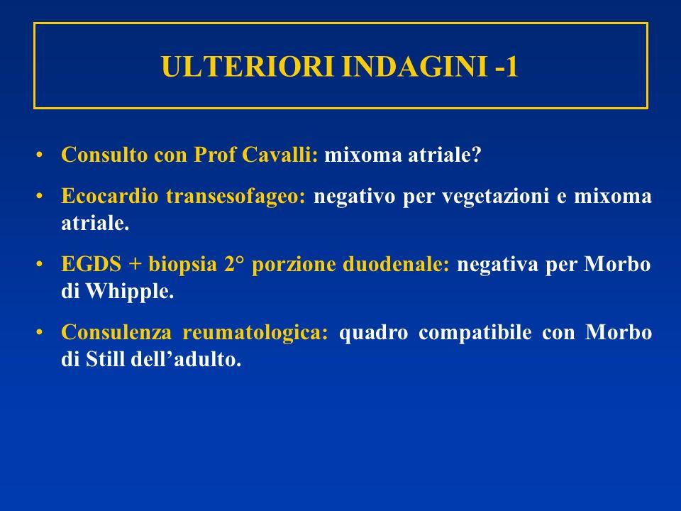 ULTERIORI INDAGINI -1 Consulto con Prof Cavalli: mixoma atriale? Ecocardio transesofageo: negativo per vegetazioni e mixoma atriale. EGDS + biopsia 2°