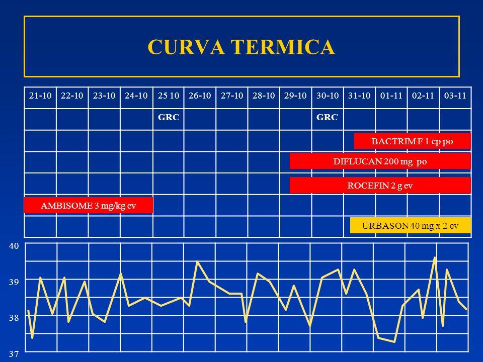 CURVA TERMICA 21-1022-1023-1024-1025 1026-1027-1028-1029-1030-1031-1001-1102-1103-11 GRC BACTRIM F 1 cp po URBASON 40 mg x 2 ev ROCEFIN 2 g ev 40 39 3
