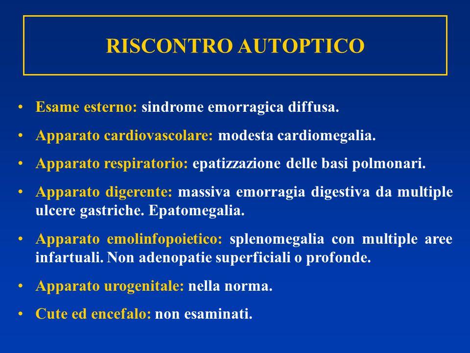RISCONTRO AUTOPTICO Esame esterno: sindrome emorragica diffusa. Apparato cardiovascolare: modesta cardiomegalia. Apparato respiratorio: epatizzazione