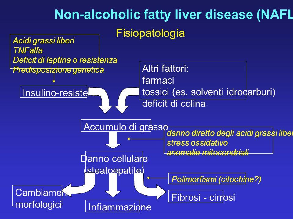 Fisiopatologia Acidi grassi liberi TNFalfa Deficit di leptina o resistenza Predisposizione genetica Insulino-resistenza Altri fattori: farmaci tossici