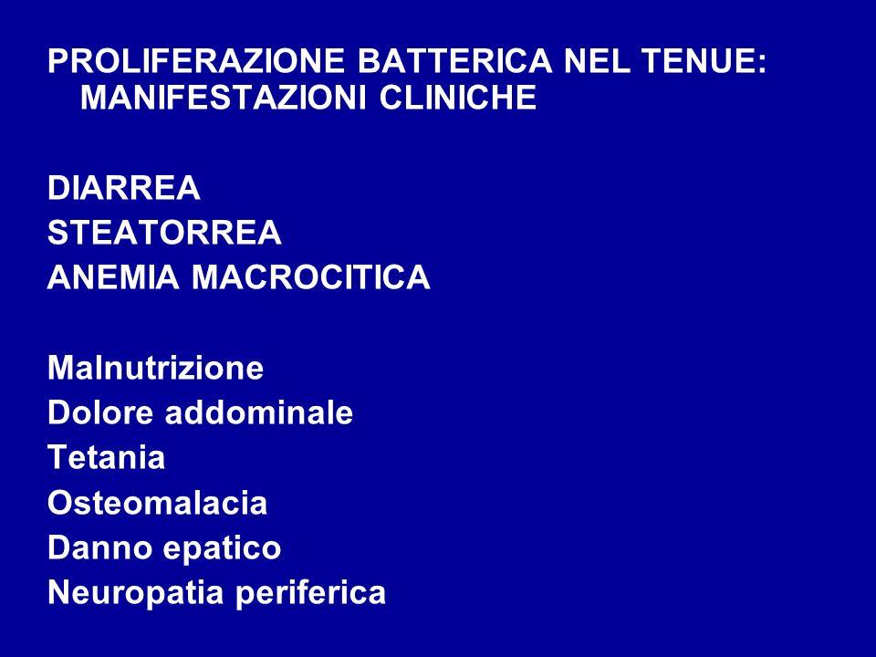 PROLIFERAZIONE BATTERICA NEL TENUE: MANIFESTAZIONI CLINICHE DIARREA STEATORREA ANEMIA MACROCITICA Malnutrizione Dolore addominale Tetania Osteomalacia