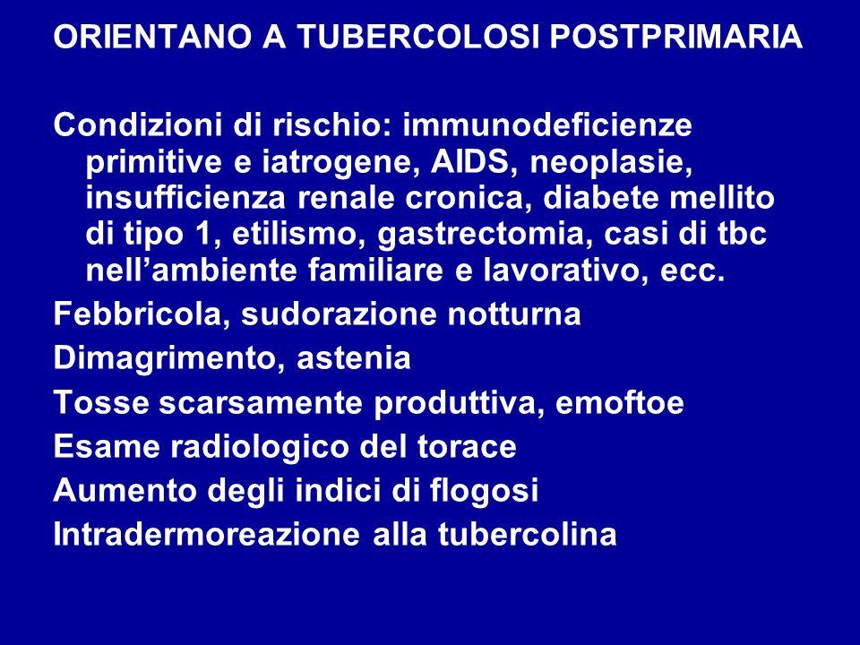 ORIENTANO A TUBERCOLOSI POSTPRIMARIA Condizioni di rischio: immunodeficienze primitive e iatrogene, AIDS, neoplasie, insufficienza renale cronica, dia