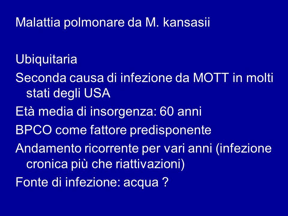 Malattia polmonare da M. kansasii Ubiquitaria Seconda causa di infezione da MOTT in molti stati degli USA Età media di insorgenza: 60 anni BPCO come f