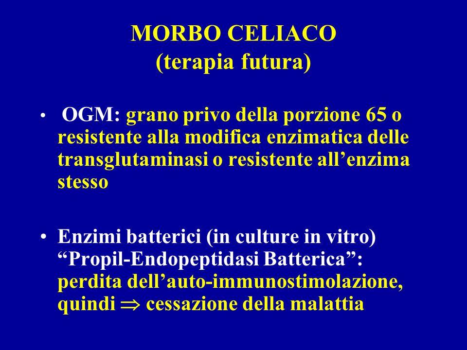 MORBO CELIACO (terapia futura) OGM: grano privo della porzione 65 o resistente alla modifica enzimatica delle transglutaminasi o resistente allenzima
