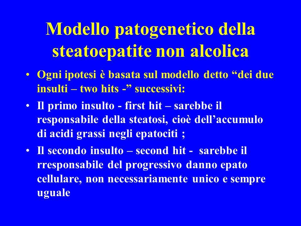 Modello patogenetico della steatoepatite non alcolica Ogni ipotesi è basata sul modello detto dei due insulti – two hits - successivi: Il primo insult