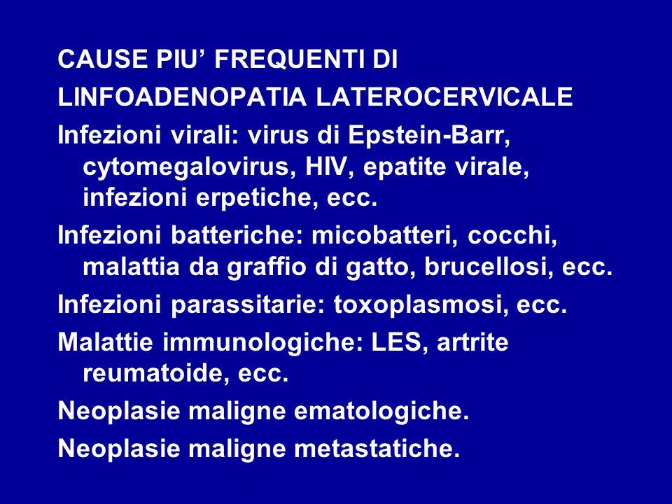 Donna di 70 anni Gastrinemia 1150 pg/ml (v.n.