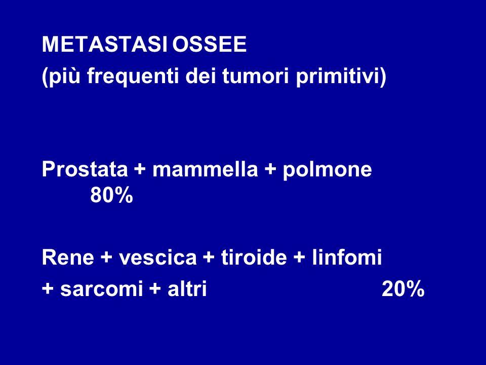 METASTASI OSSEE (più frequenti dei tumori primitivi) Prostata + mammella + polmone 80% Rene + vescica + tiroide + linfomi + sarcomi + altri20%