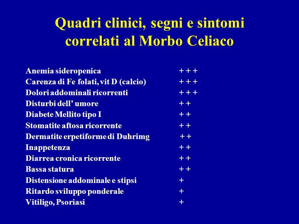Quadri clinici, segni e sintomi correlati al Morbo Celiaco Anemia sideropenica + + + Carenza di Fe folati, vit D (calcio) + + + Dolori addominali rico