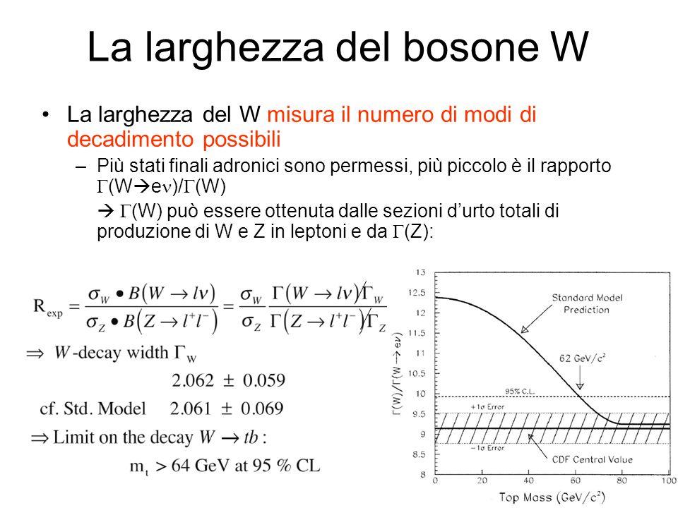 La larghezza del bosone W La larghezza del W misura il numero di modi di decadimento possibili –Più stati finali adronici sono permessi, più piccolo è