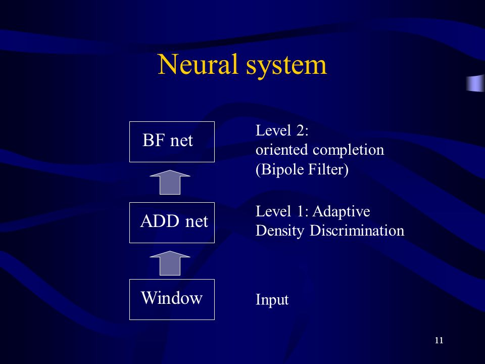 11 Neural system Window ADD net BF net Level 2: oriented completion (Bipole Filter) Level 1: Adaptive Density Discrimination Input