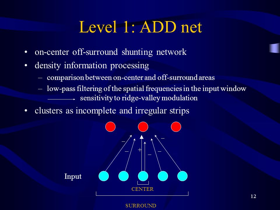 12 Level 1: ADD net on-center off-surround shunting network density information processing –comparison between on-center and off-surround areas –low-pass filtering of the spatial frequencies in the input window sensitivity to ridge-valley modulation clusters as incomplete and irregular strips Input CENTER SURROUND