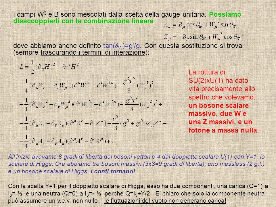 I campi W 3 e B sono mescolati dalla scelta della gauge unitaria.