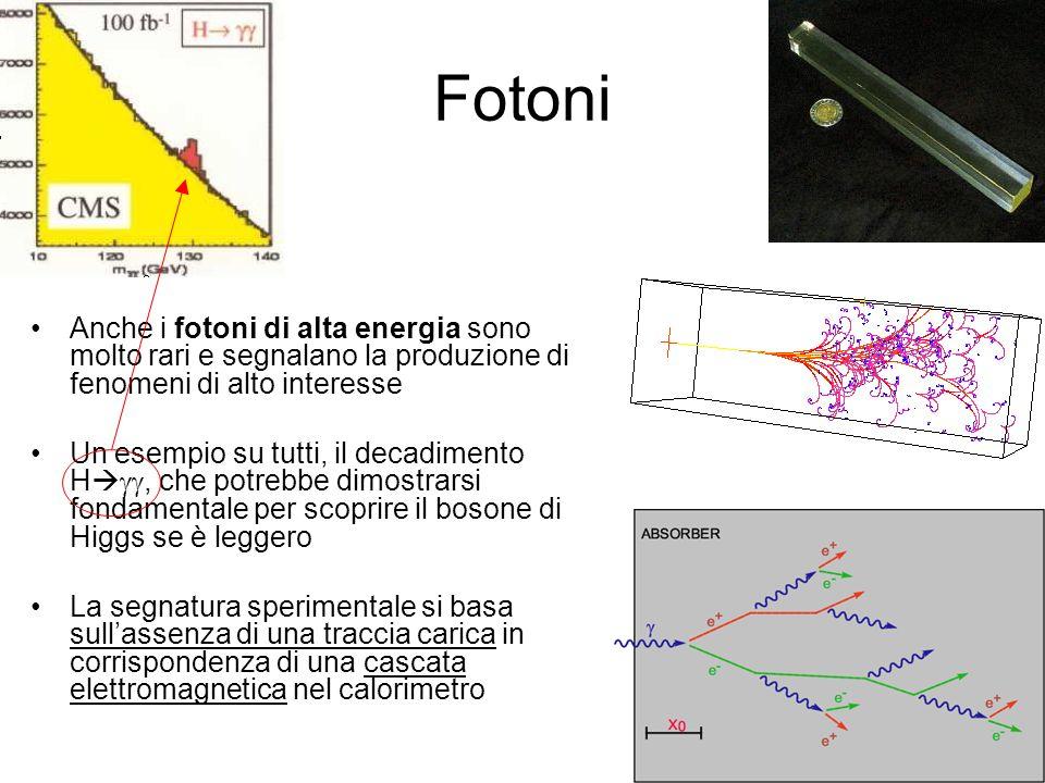 Fotoni Anche i fotoni di alta energia sono molto rari e segnalano la produzione di fenomeni di alto interesse Un esempio su tutti, il decadimento H, che potrebbe dimostrarsi fondamentale per scoprire il bosone di Higgs se è leggero La segnatura sperimentale si basa sullassenza di una traccia carica in corrispondenza di una cascata elettromagnetica nel calorimetro