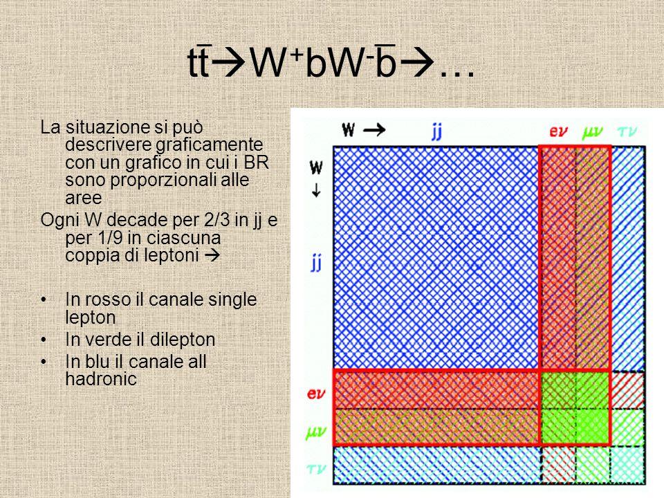 tt W + bW - b … La situazione si può descrivere graficamente con un grafico in cui i BR sono proporzionali alle aree Ogni W decade per 2/3 in jj e per