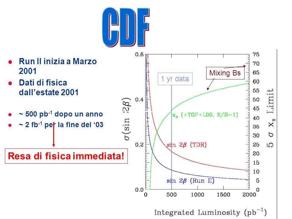 ROMA Run II inizia a Marzo 2001 Dati di fisica dallestate 2001 ~ 500 pb -1 dopo un anno ~ 2 fb -1 per la fine del 03 1 yr data Resa di fisica immediata.