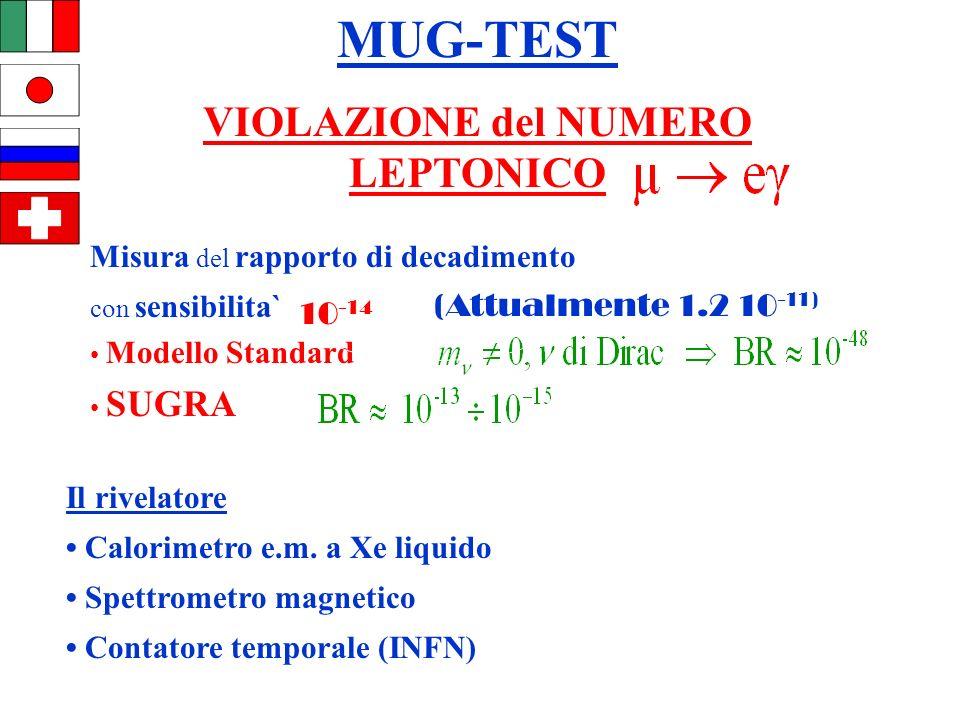 ROMA Misura del rapporto di decadimento con sensibilita` Modello Standard SUGRA MUG-TEST VIOLAZIONE del NUMERO LEPTONICO Il rivelatore Calorimetro e.m.