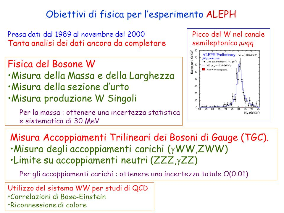 ROMA LEP e+e- Modello Standard at 200GeV KLOE;NA48;MUGTEST Decadimenti Rari BABAR;HERA-B …… Asimmetria materia-antimateria ZEUS; COMPASS ………….