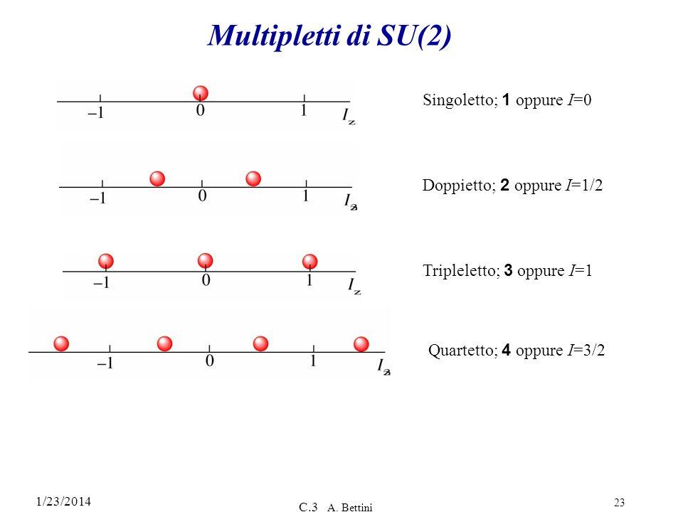 1/23/2014 C.3 A. Bettini 23 Multipletti di SU(2) Singoletto; 1 oppure I=0 Doppietto; 2 oppure I=1/2 Tripleletto; 3 oppure I=1 Quartetto; 4 oppure I=3/