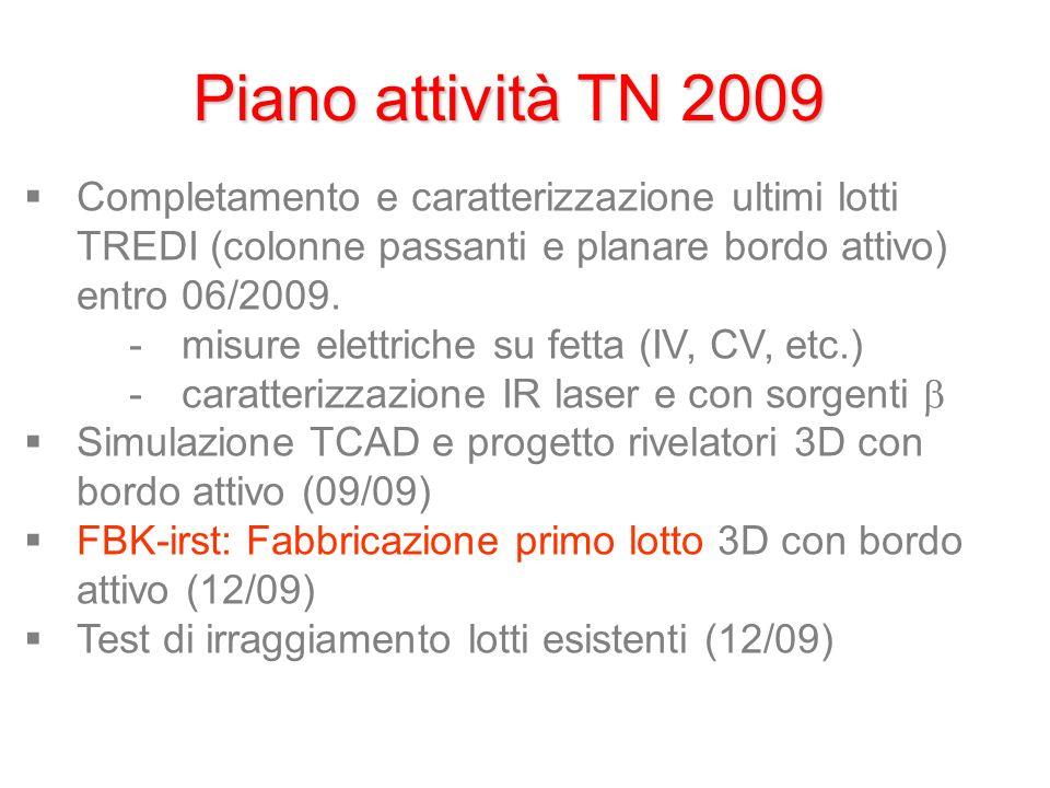 Piano attività TN 2009 Completamento e caratterizzazione ultimi lotti TREDI (colonne passanti e planare bordo attivo) entro 06/2009.