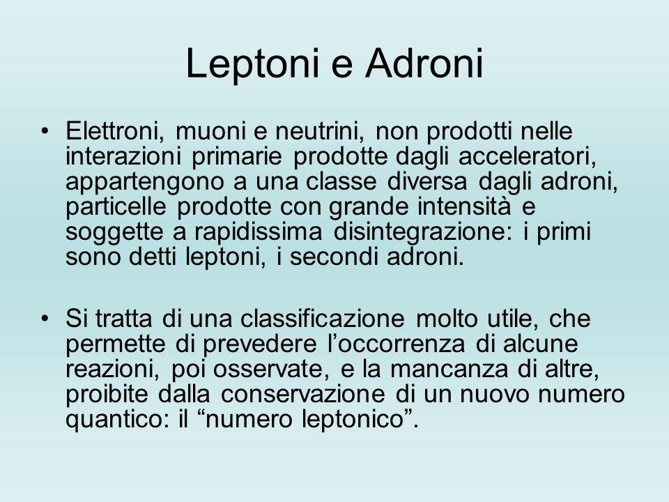 Leptoni e Adroni Elettroni, muoni e neutrini, non prodotti nelle interazioni primarie prodotte dagli acceleratori, appartengono a una classe diversa d