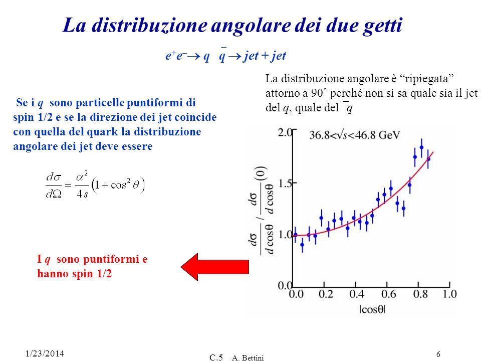 1/23/2014 C.5 A. Bettini 6 La distribuzione angolare dei due getti Se i q sono particelle puntiformi di spin 1/2 e se la direzione dei jet coincide co