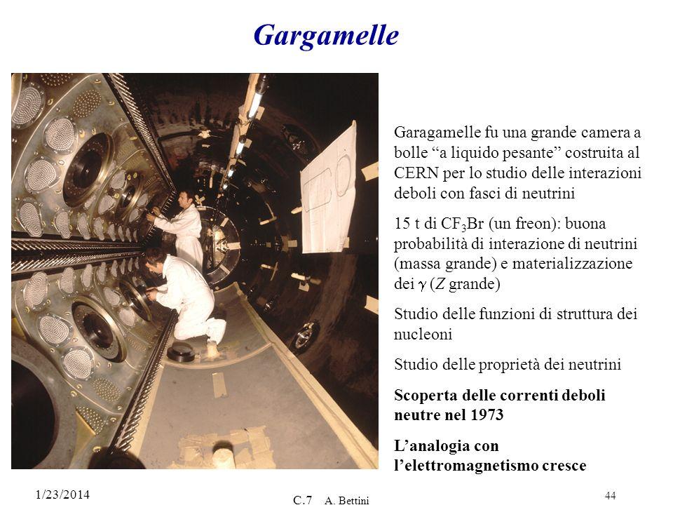 1/23/2014 C.7 A. Bettini 44 Gargamelle Garagamelle fu una grande camera a bolle a liquido pesante costruita al CERN per lo studio delle interazioni de