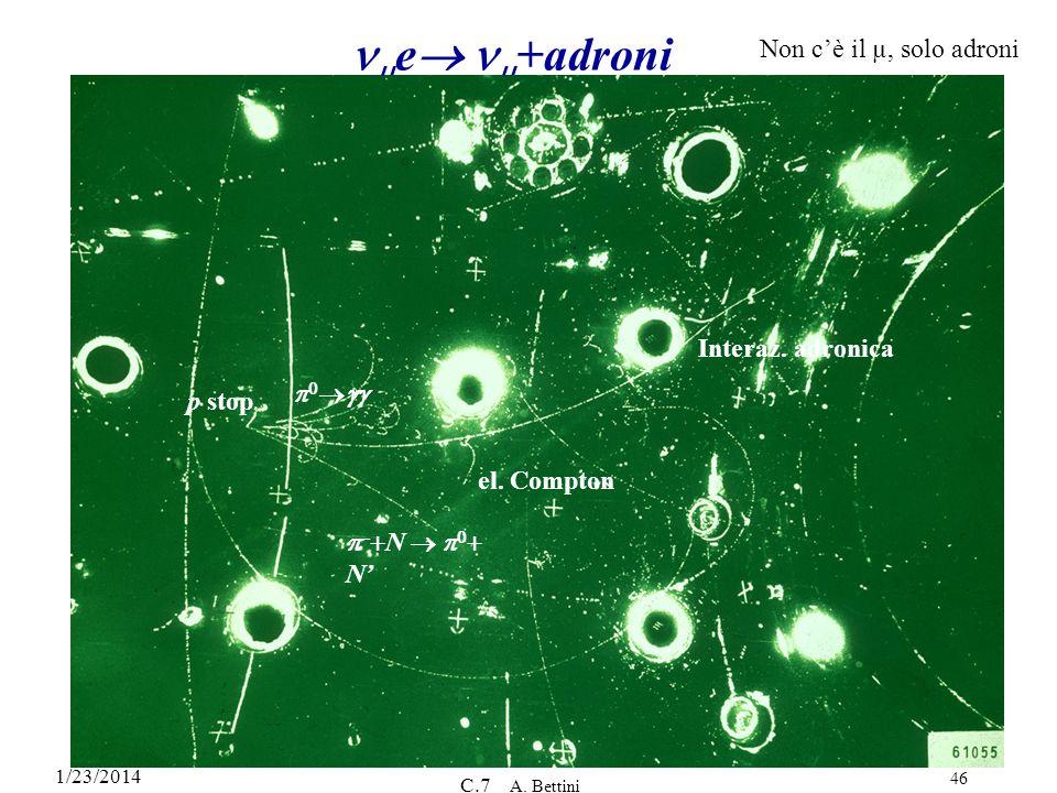 1/23/2014 C.7 A. Bettini 46 e +adroni Non cè il µ, solo adroni p stop Interaz. adronica – N N el. Compton