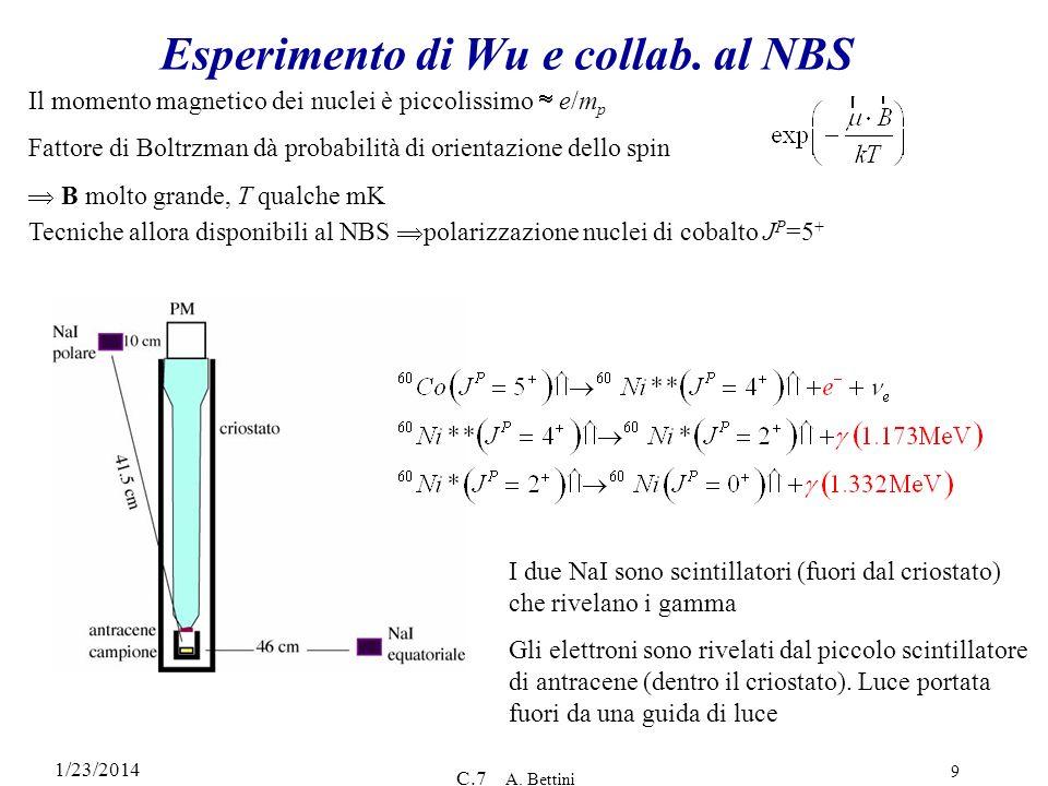1/23/2014 C.7 A. Bettini 9 Esperimento di Wu e collab. al NBS Il momento magnetico dei nuclei è piccolissimo e/m p Fattore di Boltrzman dà probabilità