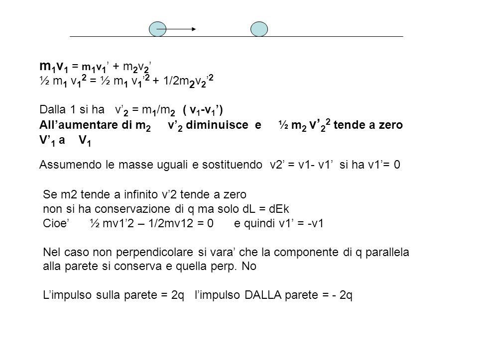 m 1 v 1 = m 1 v 1 + m 2 v 2 ½ m 1 v 1 2 = ½ m 1 v 1 2 + 1/2m 2 v 2 2 Dalla 1 si ha v 2 = m 1 /m 2 ( v 1 -v 1 ) Allaumentare di m 2 v 2 diminuisce e ½