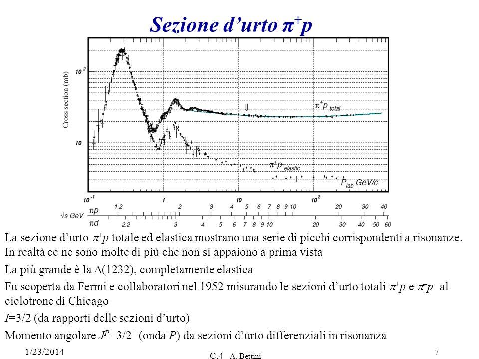 1/23/2014 C.4 A. Bettini 7 Sezione durto π + p La sezione durto + p totale ed elastica mostrano una serie di picchi corrispondenti a risonanze. In rea