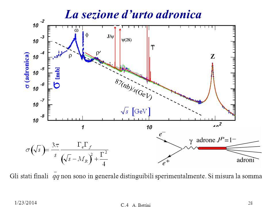 1/23/2014 C.4 A. Bettini 28 (adronica) 87(nb)/s(GeV) La sezione durto adronica Gli stati finali qq non sono in generale distinguibili sperimentalmente