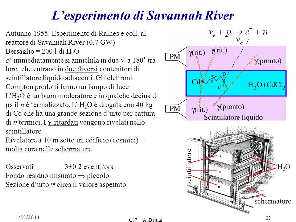 1/23/2014 C.7 A. Bettini 21 Lesperimento di Savannah River Autunno 1955. Esperimento di Raines e coll. al reattore di Savannah River (0.7 GW) Bersagli