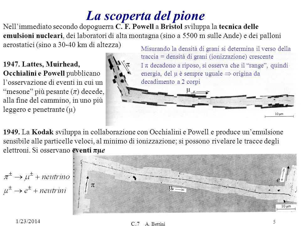 1/23/2014 C.7 A. Bettini 5 π µ e La scoperta del pione Nellimmediato secondo dopoguerra C. F. Powell a Bristol sviluppa la tecnica delle emulsioni nuc