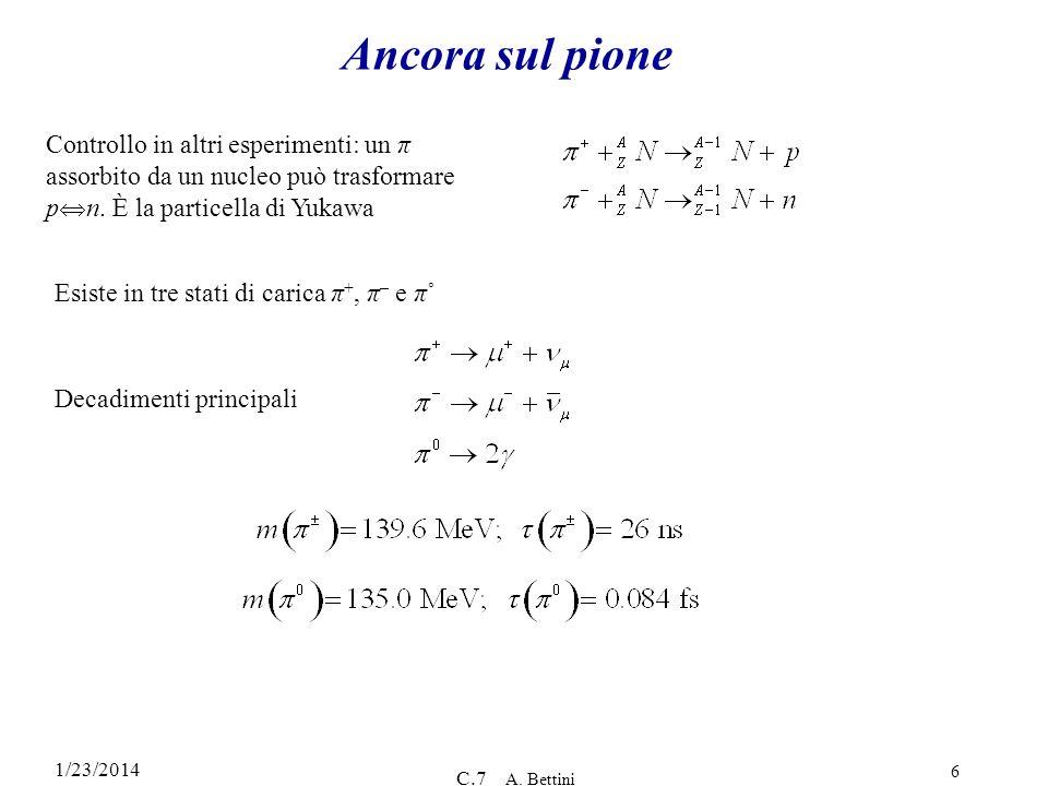 1/23/2014 C.7 A. Bettini 6 Ancora sul pione Controllo in altri esperimenti: un π assorbito da un nucleo può trasformare p n. È la particella di Yukawa