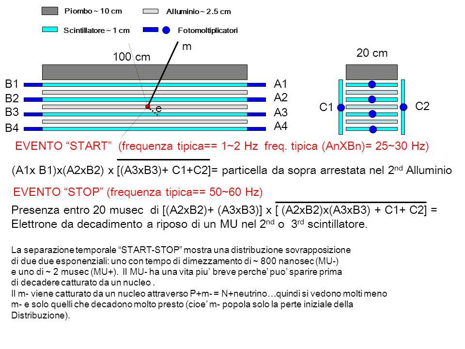 Piombo ~ 10 cm Alluminio ~ 2.5 cm Scintillatore ~ 1 cmFotomoltiplicatori A1 A2 A3 A4 B1 B2 B3 B4 C1 C2 (A1x B1)x(A2xB2) x [(A3xB3)+ C1+C2]= particella