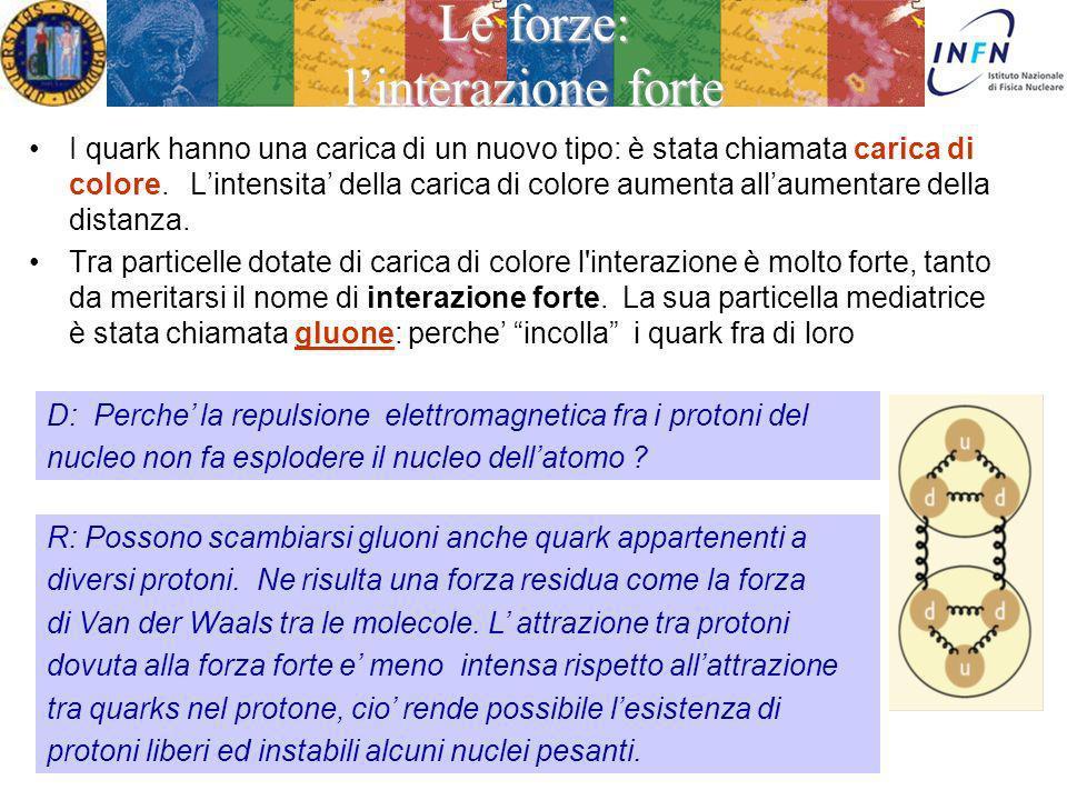Ezio Torassa Le forze: la teoria ElettroDebole LEP Treviso 5 Febbraio 2013