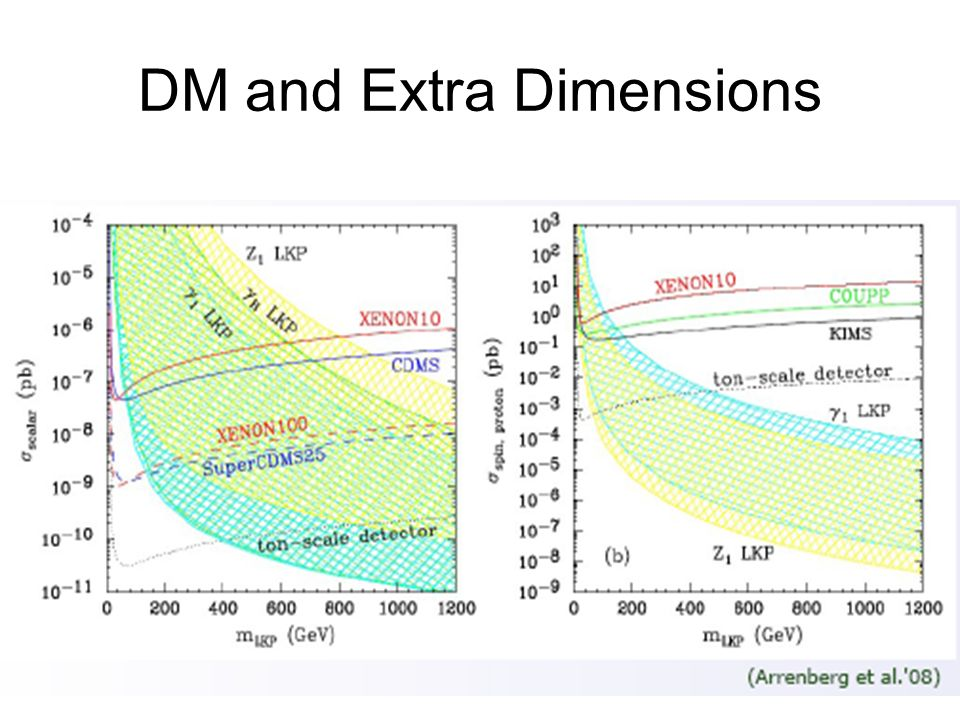 DM and Extra Dimensions