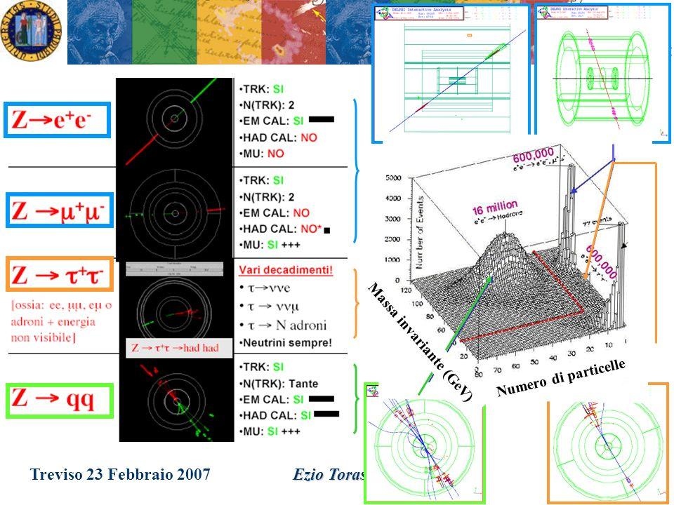 Treviso 23 Febbraio 2007Ezio Torassa Decadimenti della Z La Z° può decadere in 5 modi diversi, ciascuno con una sua probabilità: p=0,20 (invisibile) e - e + p=0,0337 p v = 0,0421 Z° - + p=0,0337 p v = 0,0421 - + p=0,0337 p v = 0,0421 q q p=0,699 p v = 0,8738 q q comprende le seguenti 5 possibilità: u u d d s s c c b b ( t t escluso in quanto m t >M Z )