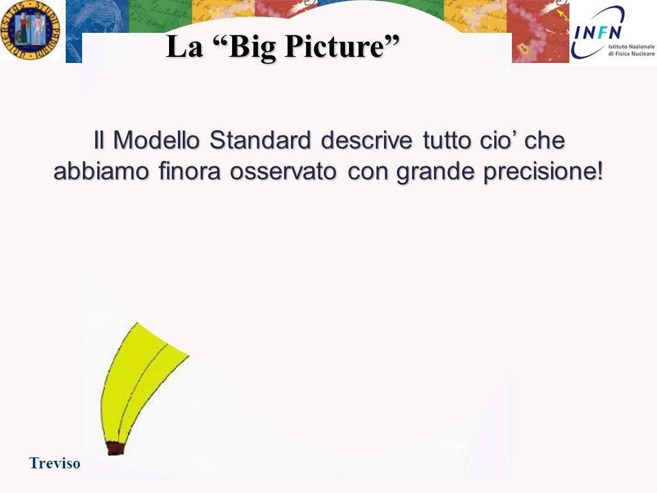 Treviso 23 Febbraio 2007Ezio Torassa Altri problemi aperti… Alcuni buoni motivi per credere che il Modello Standard sia una (buona) approssimazione di