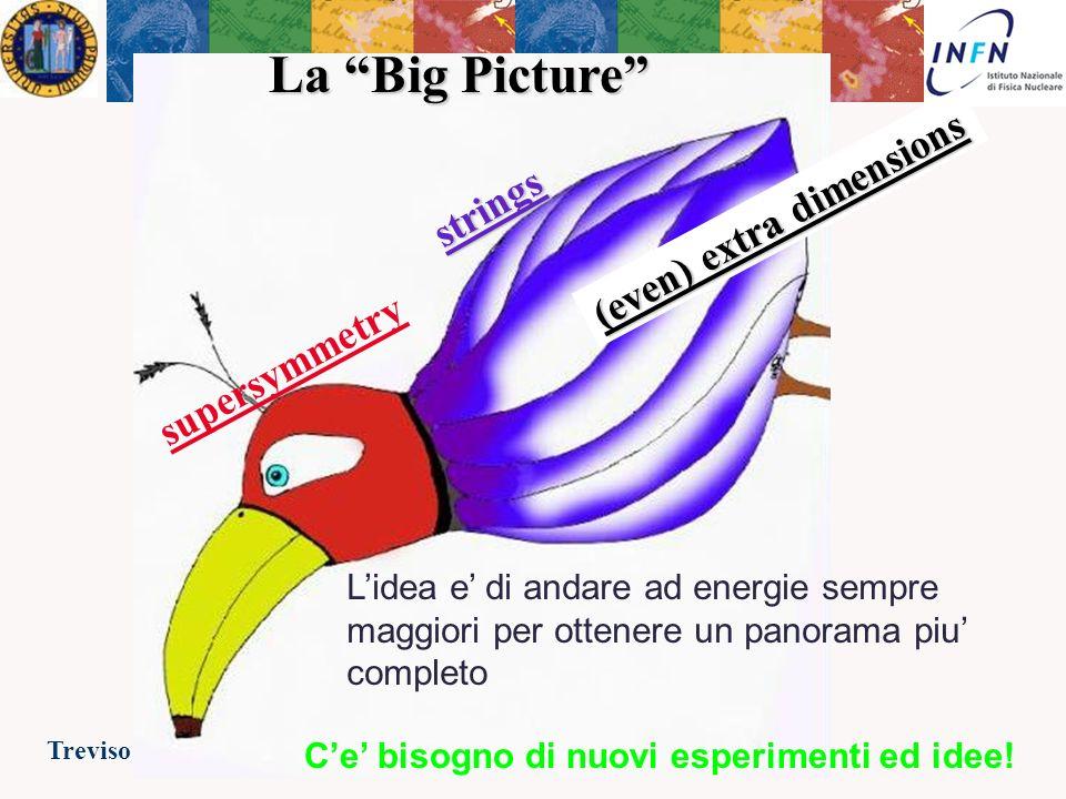 Treviso 23 Febbraio 2007Ezio Torassa La Big Picture Il Modello Standard descrive tutto cio che abbiamo finora osservato con grande precisione!