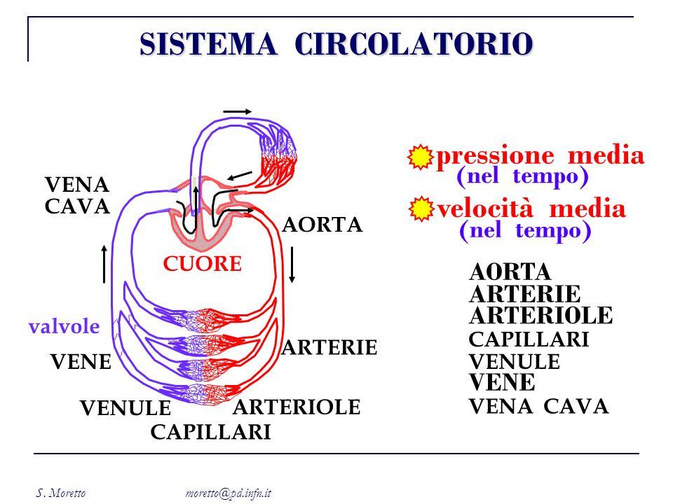 S. Moretto moretto@pd.infn.it CUORE AORTA CAPILLARI ARTERIOLE ARTERIE VENA CAVA VENE VENULE valvole pressione media velocità media (nel tempo) AORTA A