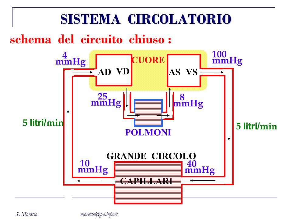 S. Moretto moretto@pd.infn.it schema del circuito chiuso : CUORE POLMONI CAPILLARI GRANDE CIRCOLO AD VD ASVS 100 mmHg 5 litri/ min 40 mmHg 4 mmHg 5 li