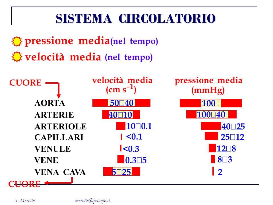 S. Moretto moretto@pd.infn.it pressione media velocità media (nel tempo) velocità media (cm s –1 ) pressione media (mmHg) CUORE 50 40 AORTA 100 40 10