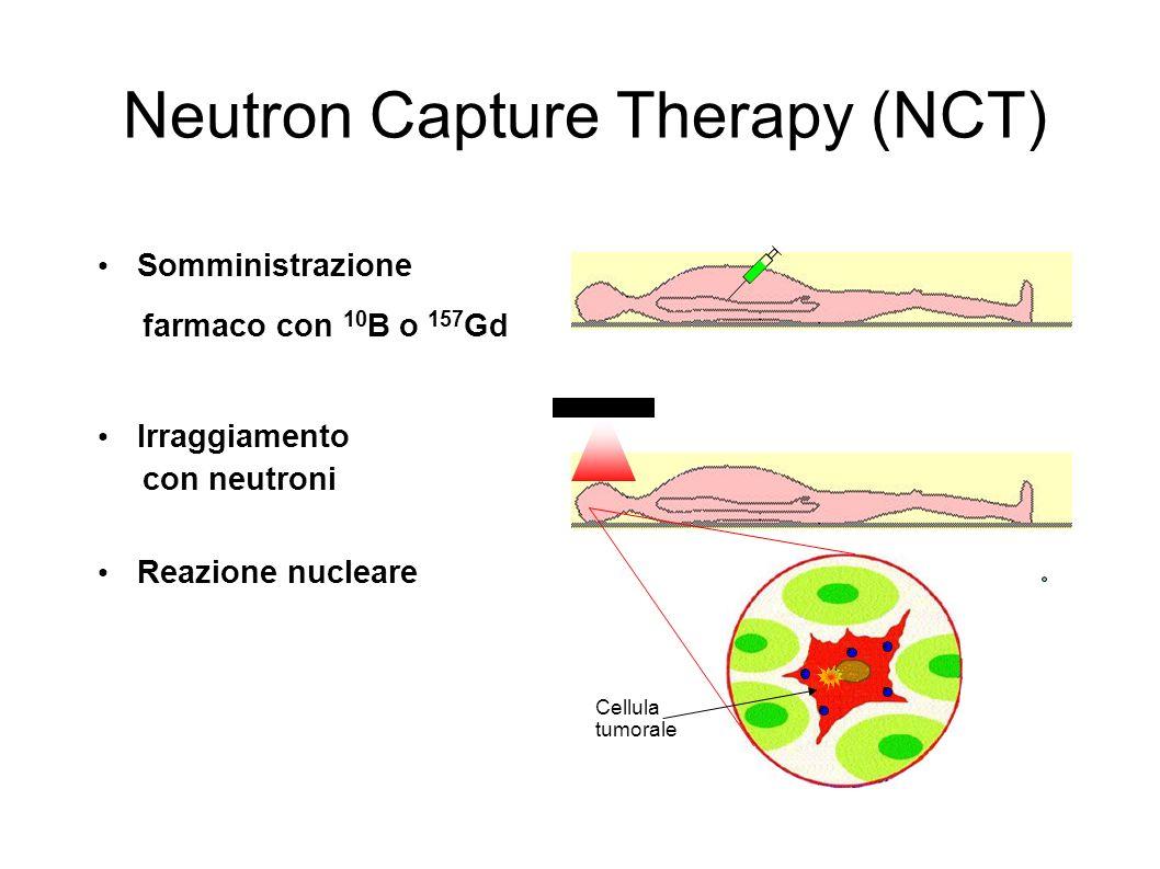 Neutron Capture Therapy (NCT) Somministrazione farmaco con 10 B o 157 Gd Irraggiamento con neutroni Reazione nucleare B B B B B B Cellula tumorale