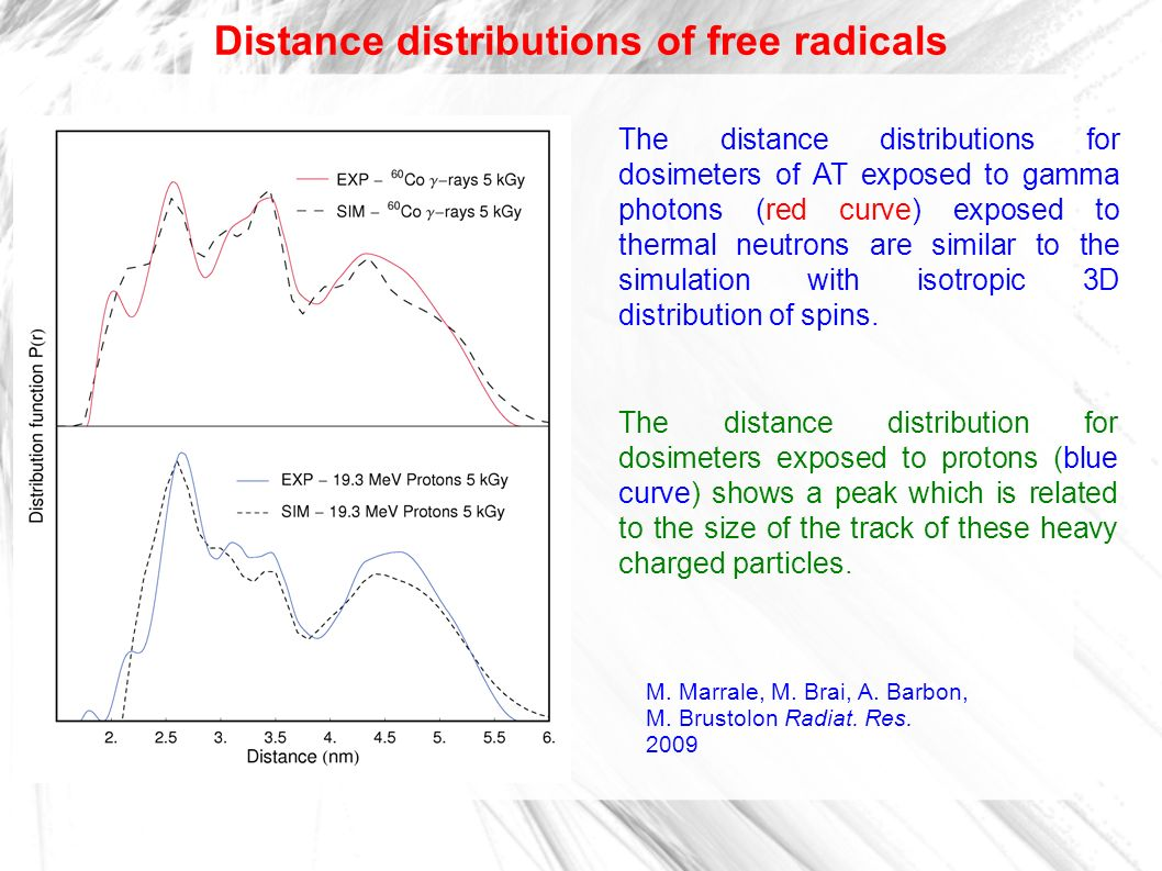 Distance distributions of free radicals The distance distributions for dosimeters of AT exposed to gamma photons (red curve) exposed to thermal neutro