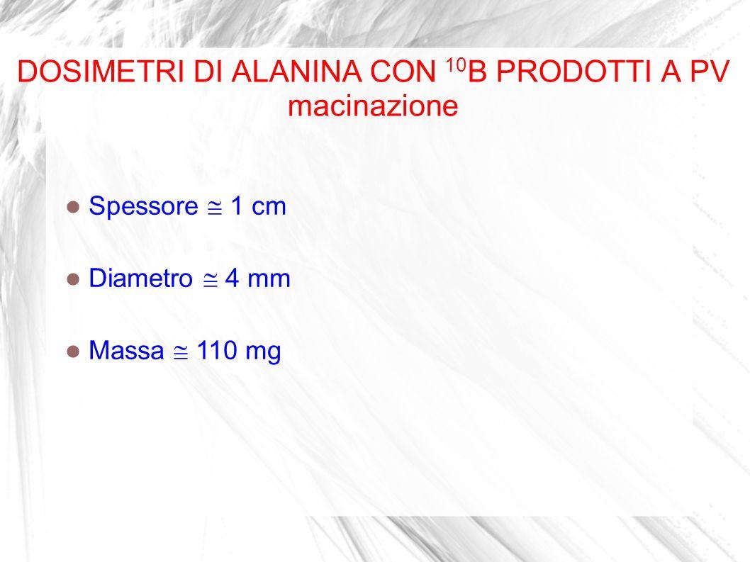 DOSIMETRI DI ALANINA CON 10 B PRODOTTI A PV macinazione Spessore 1 cm Diametro 4 mm Massa 110 mg