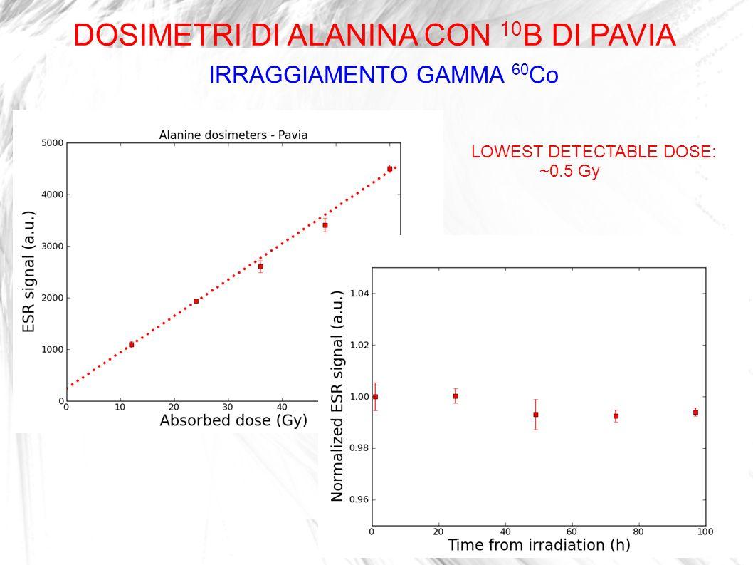 IRRAGGIAMENTO GAMMA 60 Co LOWEST DETECTABLE DOSE: ~0.5 Gy DOSIMETRI DI ALANINA CON 10 B DI PAVIA