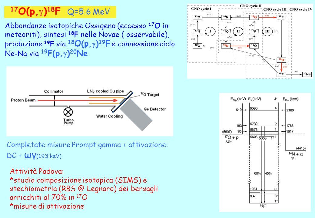 17 O(p, g ) 18 F Q=5.6 MeV Abbondanze isotopiche Ossigeno (eccesso 17 O in meteoriti), sintesi 18 F nelle Novae ( osservabile), produzione 19 F via 18 O(p, g ) 19 F e connessione ciclo Ne-Na via 19 F(p, g ) 20 Ne Completate misure Prompt gamma + attivazione: DC + ωγ (193 keV) Attività Padova: *studio composizione isotopica (SIMS) e stechiometria (RBS @ Legnaro) dei bersagli arricchiti al 70% in 17 O *misure di attivazione
