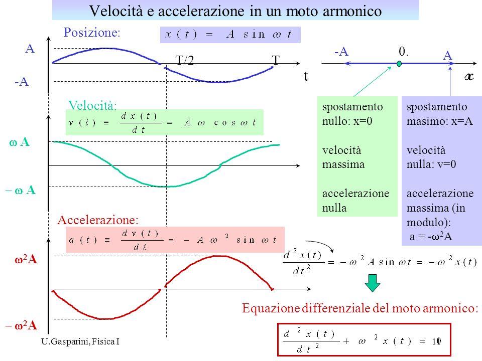 U.Gasparini, Fisica I11 Posizione: Accelerazione: A -A TT/2 t x 0.-A A spostamento nullo: x=0 velocità massima accelerazione nulla A A A A Velocità: Equazione differenziale del moto armonico: spostamento masimo: x=A velocità nulla: v=0 accelerazione massima (in modulo): a = - 2 A Velocità e accelerazione in un moto armonico